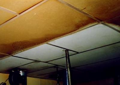 Ceiling1503 (Custom)
