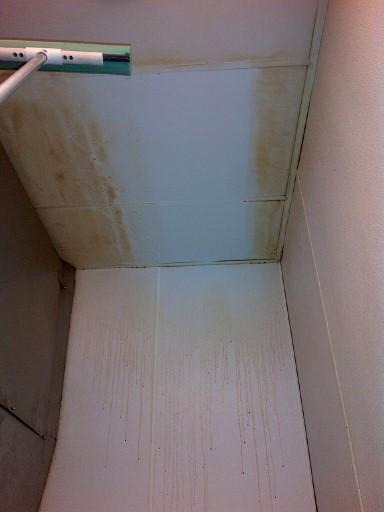 Ceiling1514 (Custom)